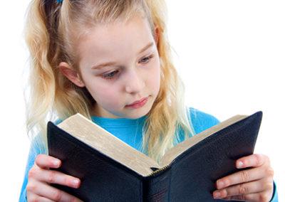 Respetando La Biblia