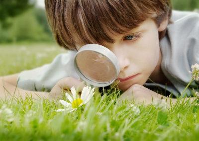 Los Niños y La Naturaleza