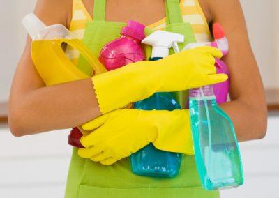 Limpieza Total – Programa