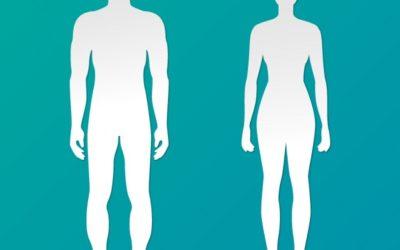 ¿Cómo La Obesidad Afecta Nuestro Cuerpo?